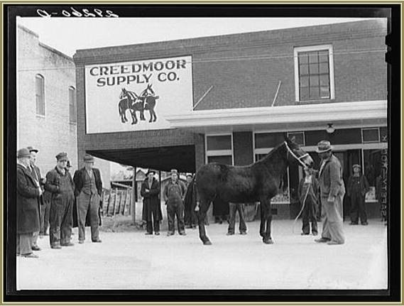 Creedmoor Supply Store