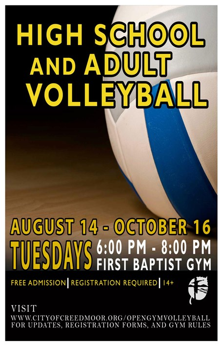Adult Volleyball Flyer - Fall 2018
