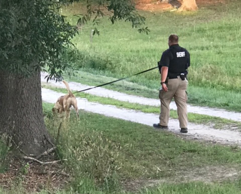 Sheriff K9 Search